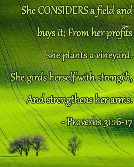 Proverbs31_16to17